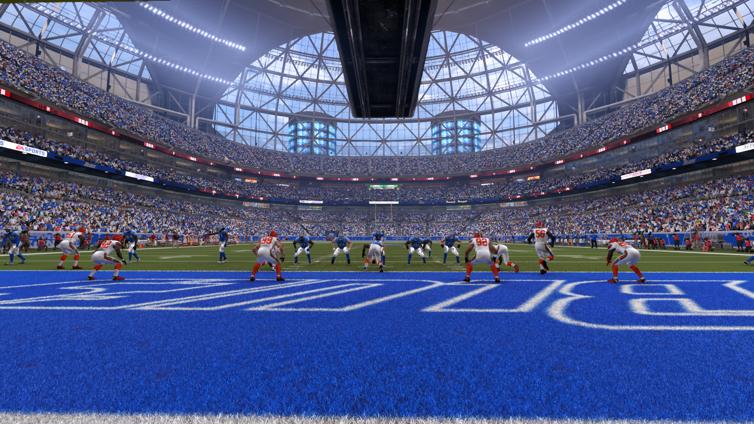Image result for madden stadiums